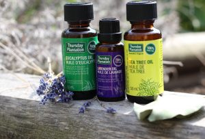 Tea Tree and Eucalyptus Oils