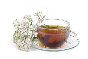 cup of valerian tea