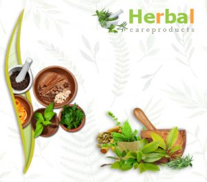 Natural Herbal Remedies for Health and Skin
