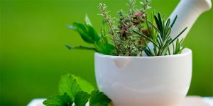 5 REASONS PEOPLE ARE TURNING TO HERBAL PRODUCTS